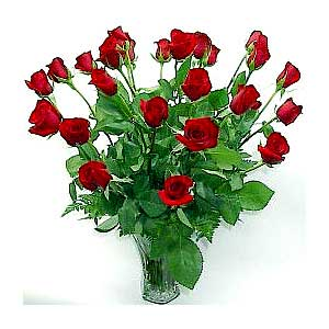 Two Dozen Signature Red Roses
